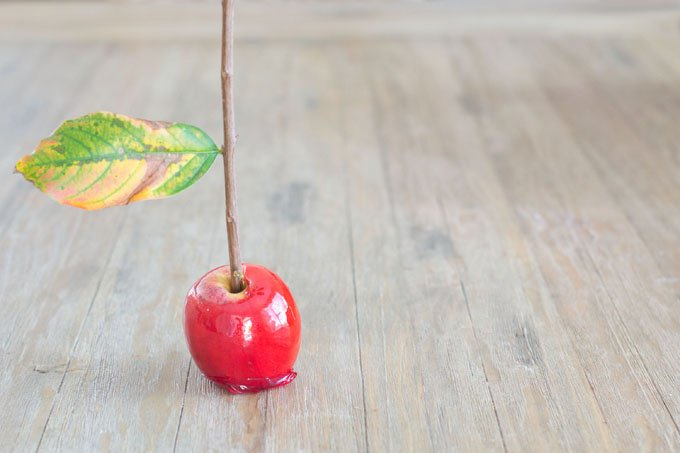 Using branches in candy apples