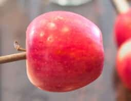 Best Candy-Apple-Making Tips