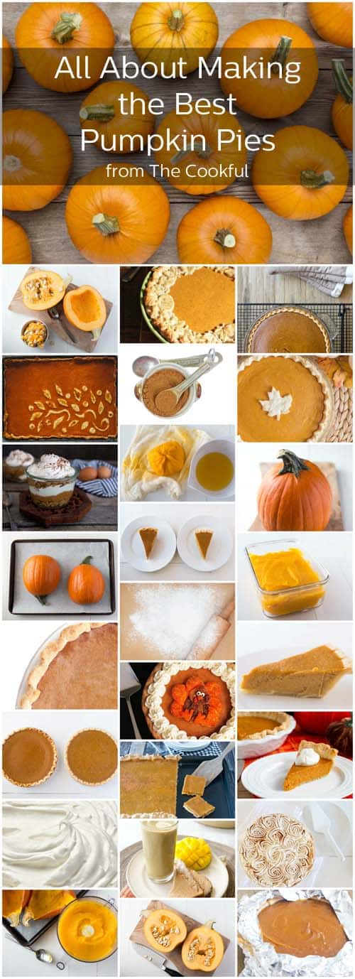 Everything you need to know to make the most beautiful and most delicious pumpkin pies. And more pumpkin pie fun!