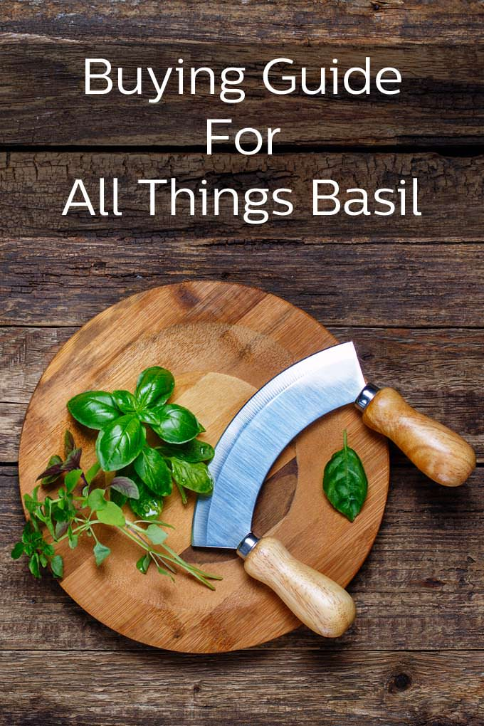 Buying Guide for All Things Basil