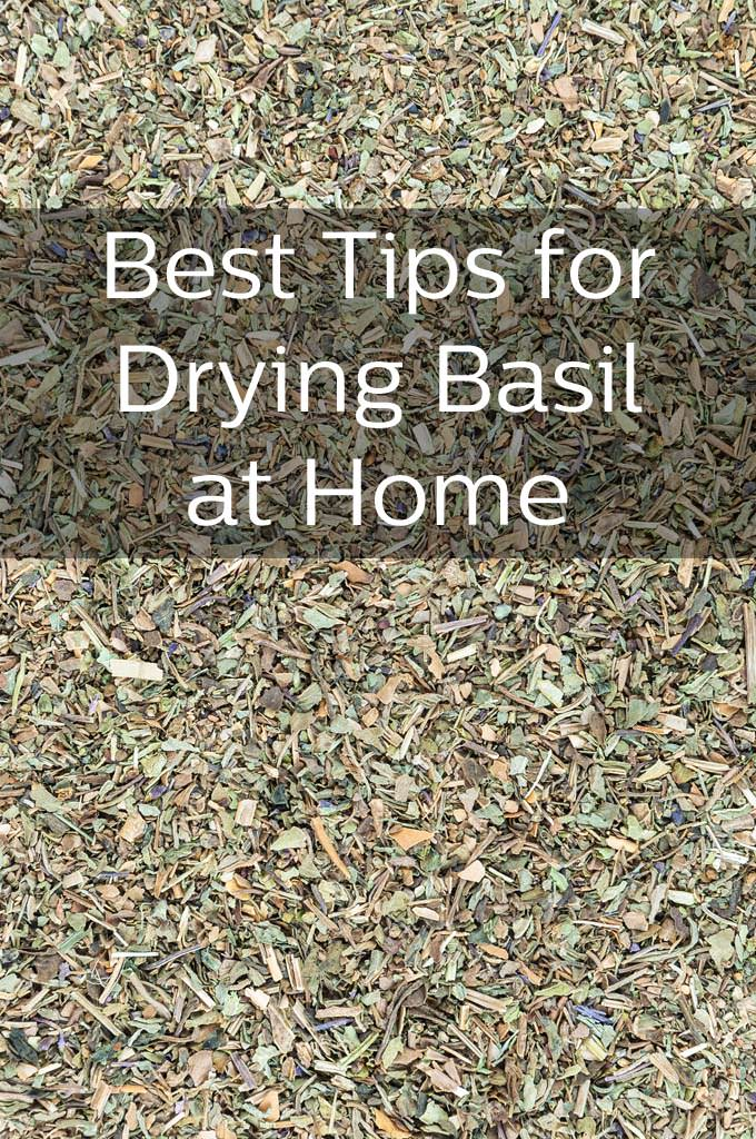 Dried basil with the text Best Tips for Drying Basil at Home.