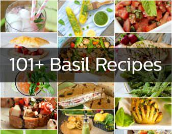 101+ Basil Recipes