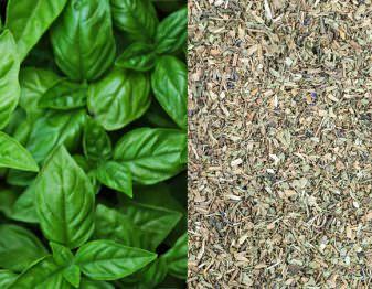 Learn what types of recipes are best for dry basil and what types need fresh