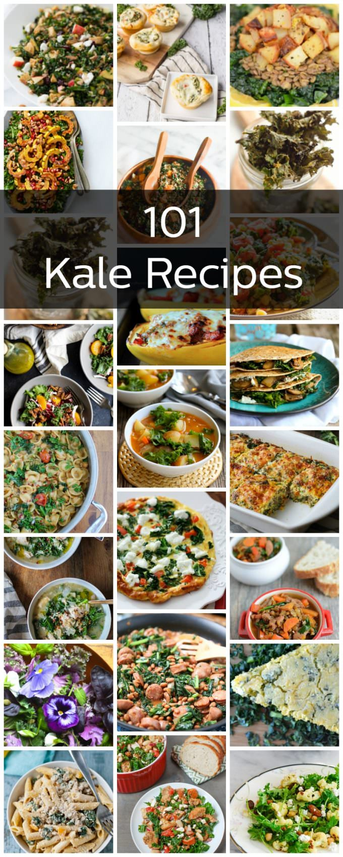 All the delicious kale recipes that you could ever need. From salads, to pasta, to smoothies - we've got you covered.