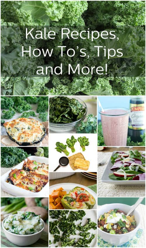 Get all these kale recipes, how to's, tips and more to bring this green leafy deliciousness to your table.