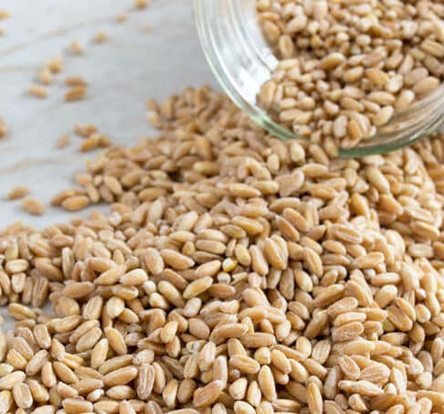 Learn how to make farro using three different methods, stove-top, oven and slow cooker.
