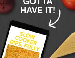 Our Slow Cooker Dips Ebook is full of how-to's, tips and recipes for your ooeyest gooeyest dips ever!