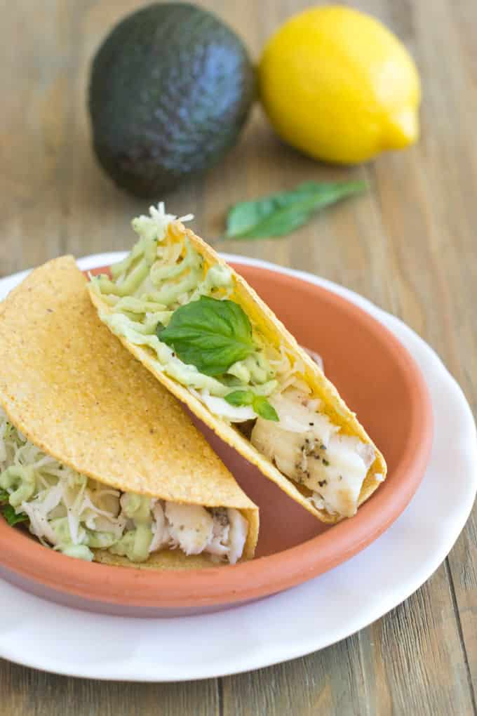 Who's looking for some Taco Tuesday fun? Fish tacos go on a new journey with an avocado cream sauce that has fresh basil and lemon in it. It's an amazing combination