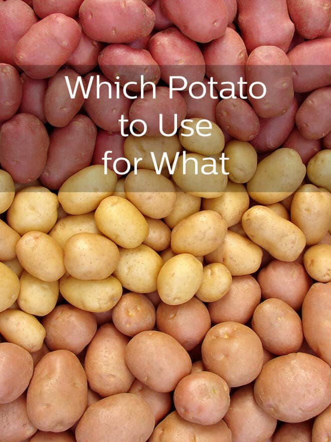 No need for bewilderment in the potato aisle. This easy guide will have you shopping for the right potato for your recipe with confidence.