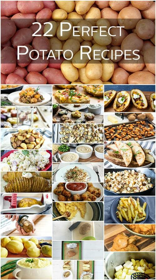 We've got potato recipes galore! This staple ingredient makes delicious comfort food dishes everyone will love. You'll have a hard time deciding which recipe to make first.