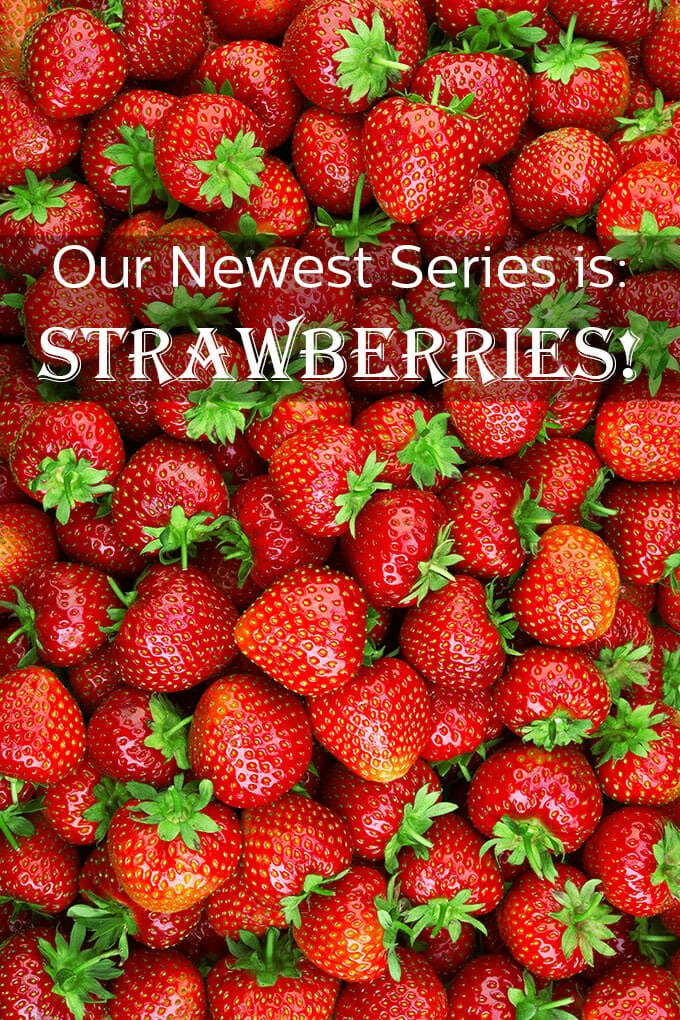 Our newest series starts today. It's all about strawberries. Let's bite in and get fresh with so many amazing recipes and tips all about scrumptious strawberries.