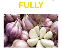 Our Garlic 101 Ebook is Out!
