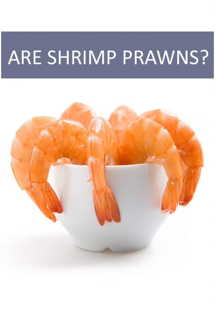If you order shrimp, are you getting prawns? Are they the same animal? What are the differences between a shrimp and a prawn?