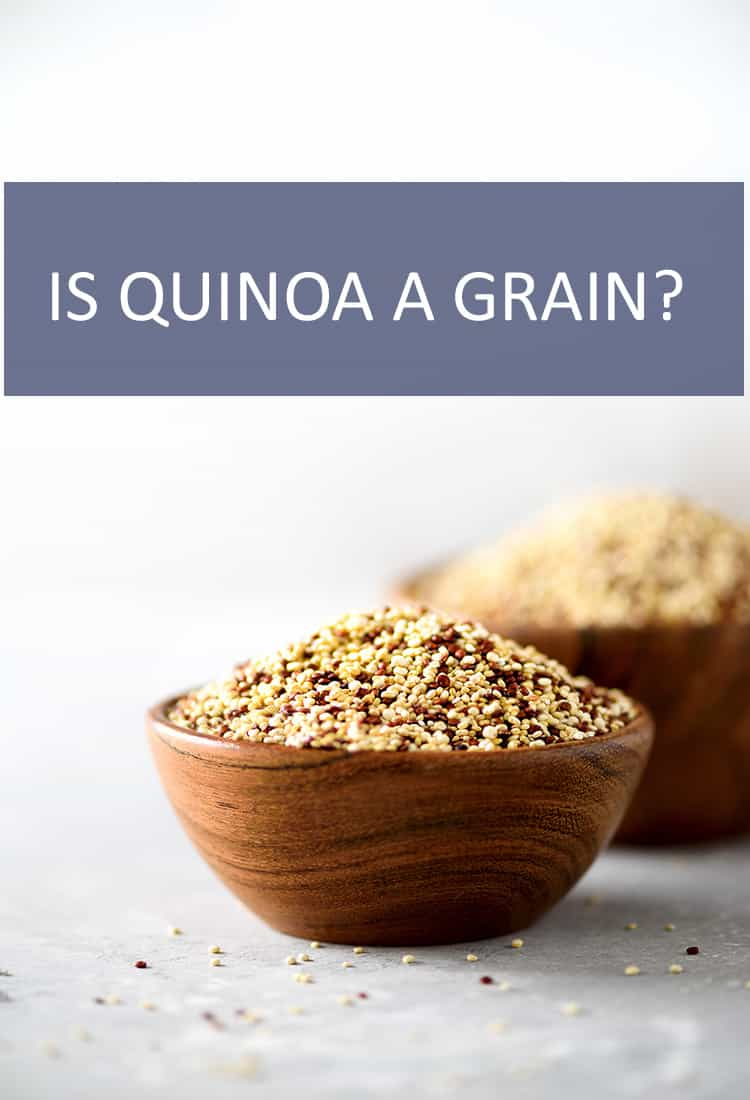 Quinoa is a superfood that is taking the world by storm. But there is much debate as to whether it's a grain.