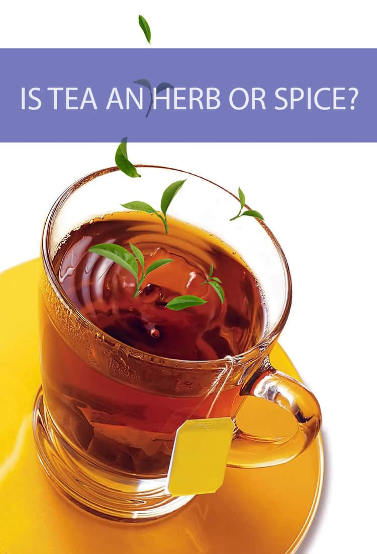 Before you steep that teabag into some water, ask yourself if what you're dropping in is actually an herb, or is it a spice?