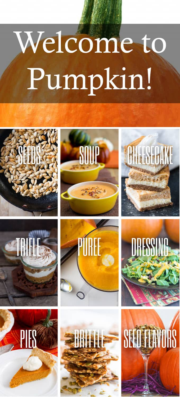 Collage of pumpkin dishes with text reading welcome to pumpkin.